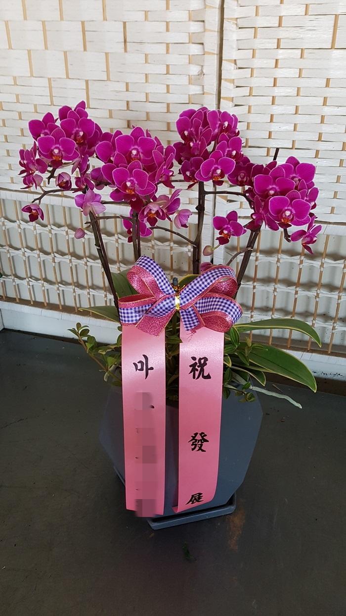 주문자:(주)정ㅇㅇ/서울 구로구로 배송된 상품 사진입니다