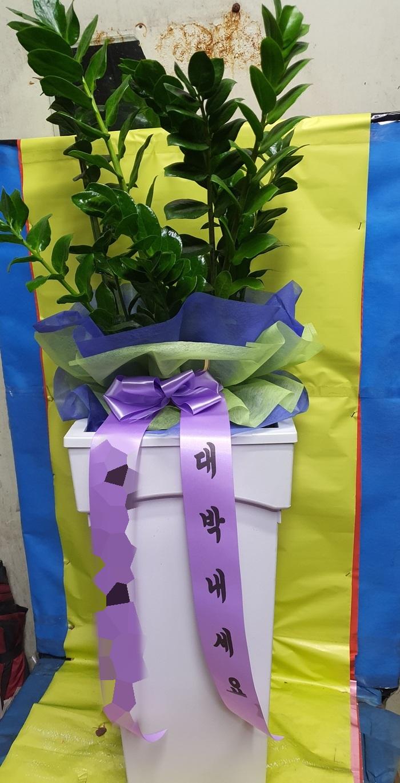 주문자 김00 경북구미로 배송된 상품사진입니다