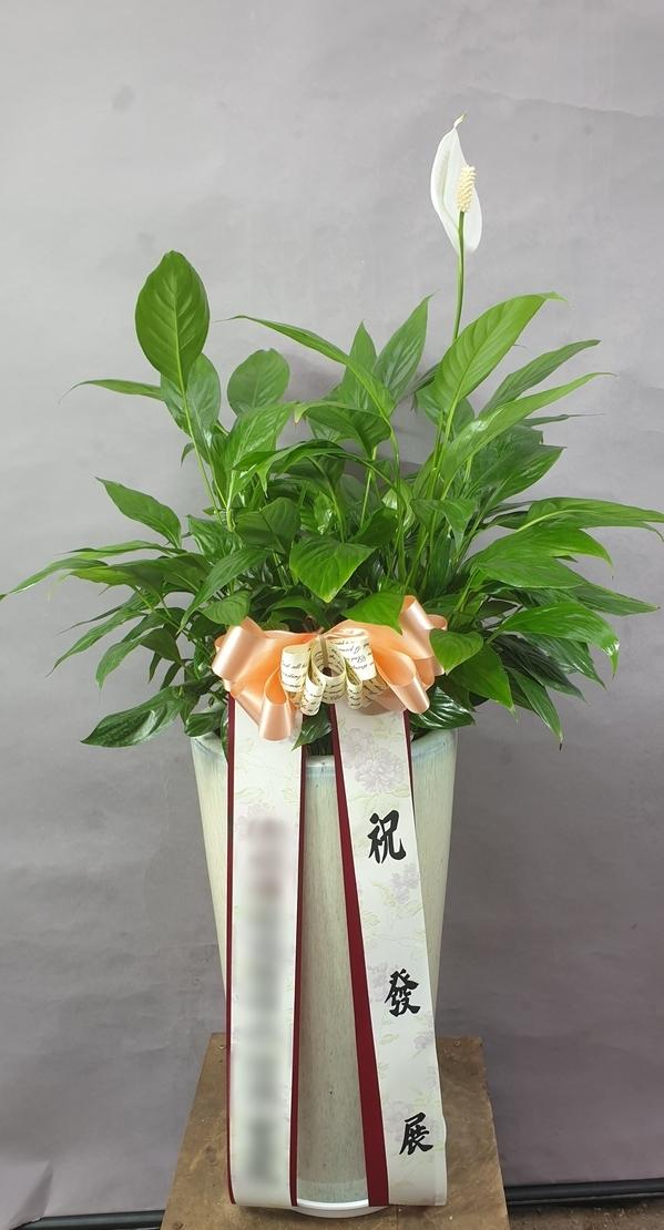 주문자 (주)미ㅇ 경기도 성남으로 배송된 상품사진입니다