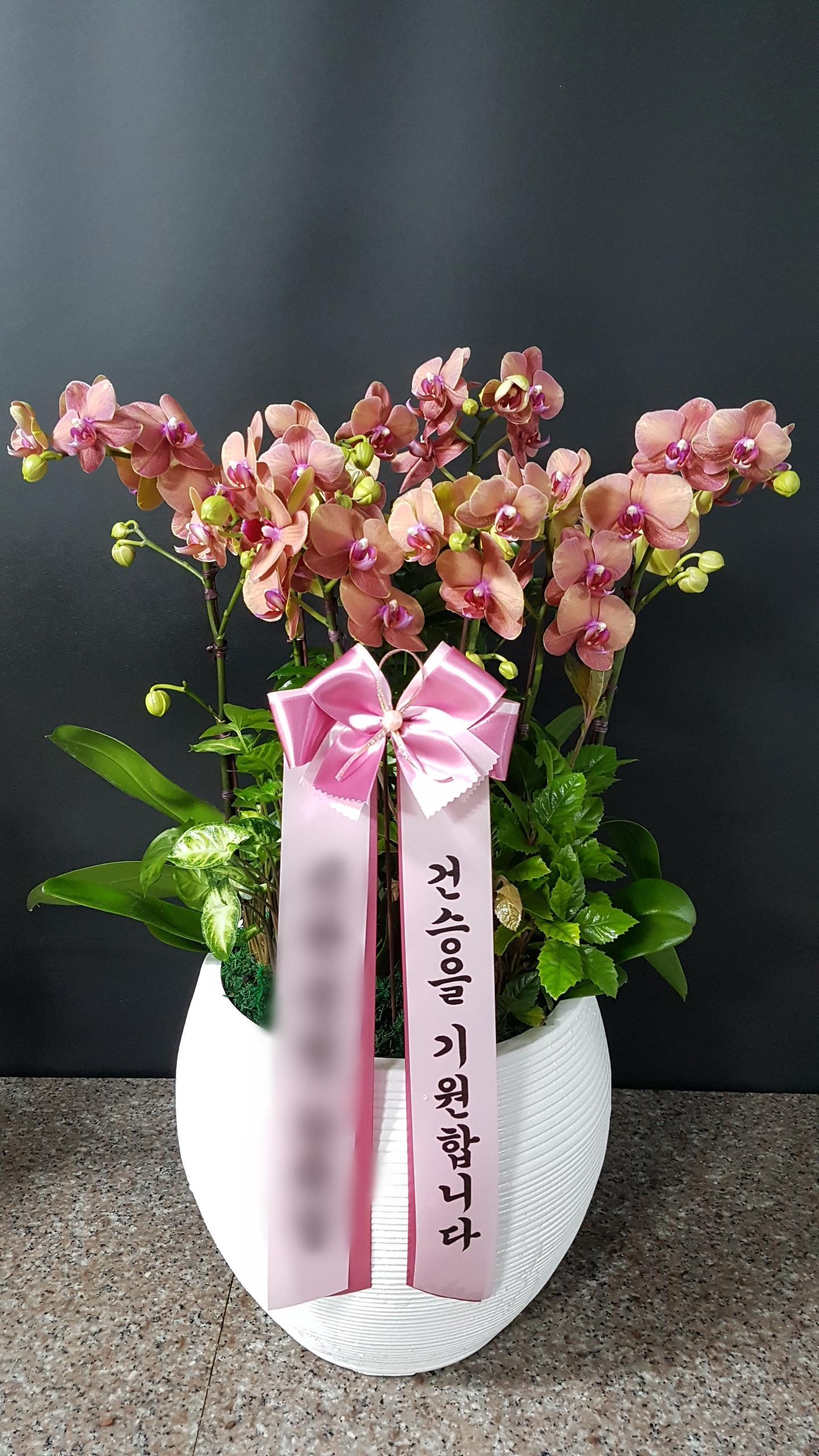 주문자 송ㅇㅇ 서울 중구로 배송된 상품사진입니다