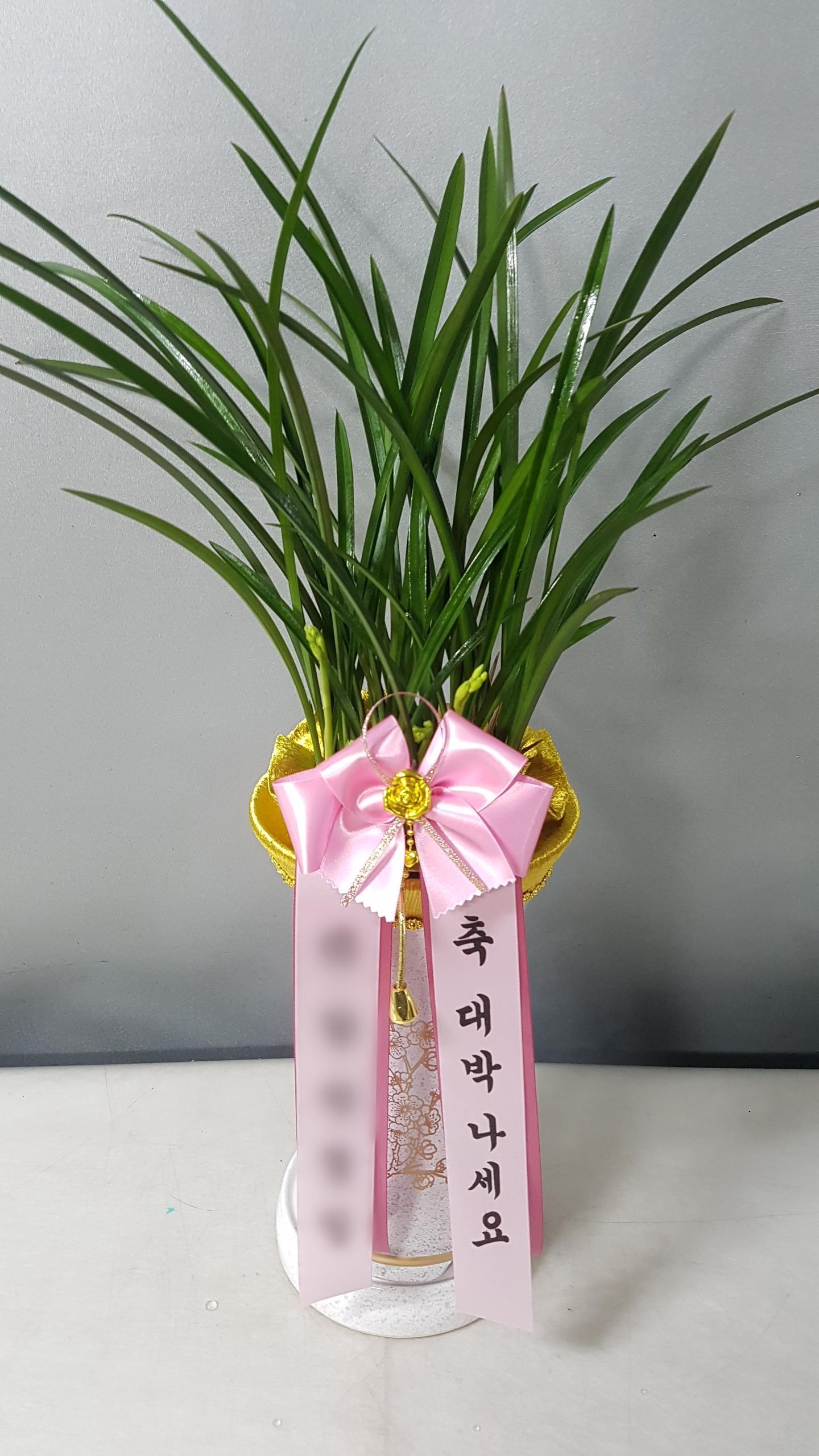 주문자 박ㅇㅇ 경기도 의왕으로 배송된 상품사진입니다