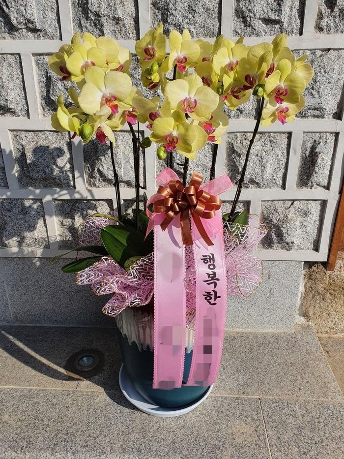 주문자 주ㅇㅇ 경기도 남양주시로 배송된 상품사진입니다