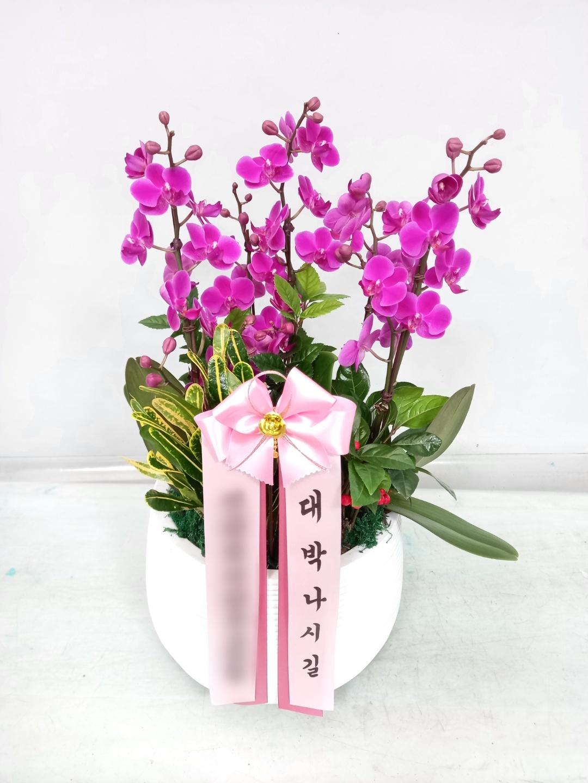 주문자 신ㅇㅇ 서울 성동구로 배송된 상품사진입니다