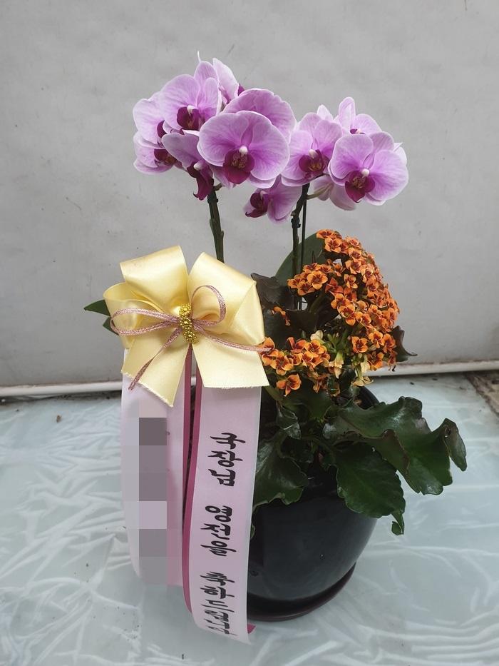 주문자 문00 서울 양천 배송된 상품 사진입니다