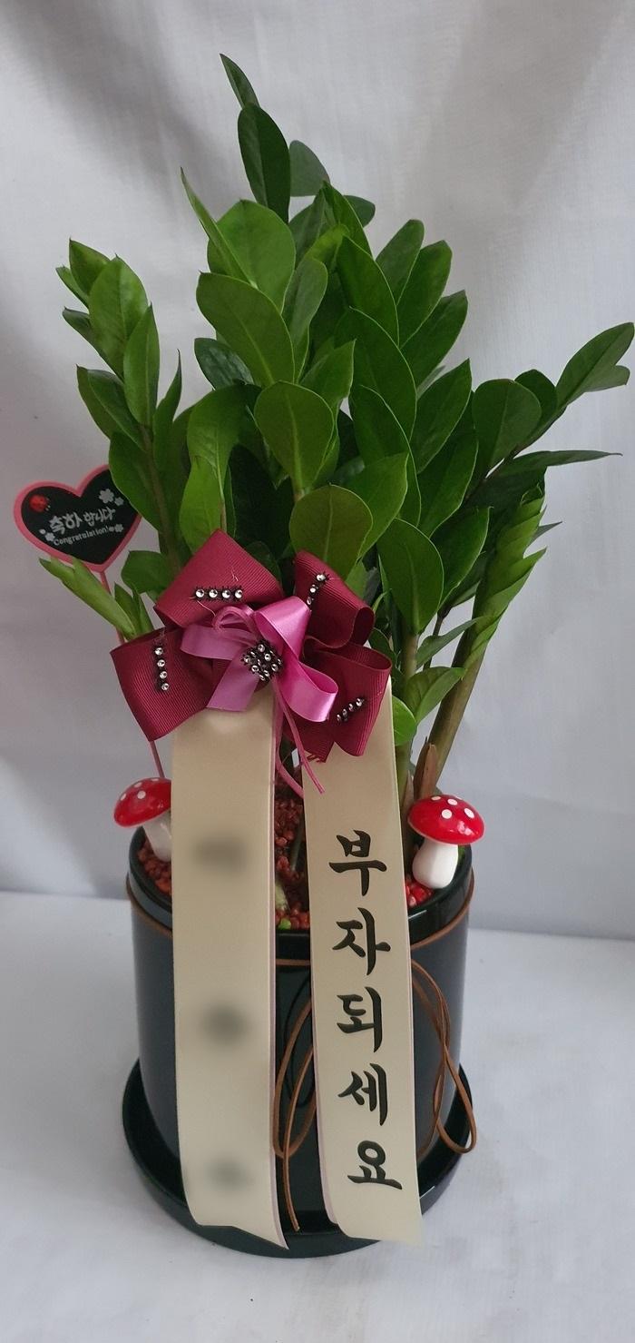 주문자 이ㅇㅇ 경기도 성남시  배송사진입니다.